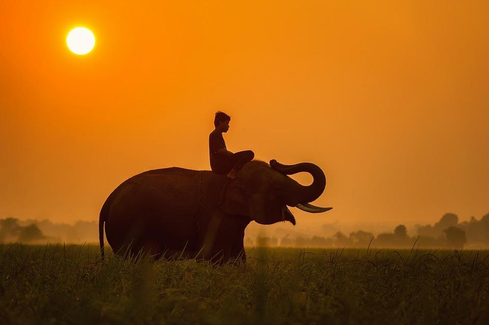 полети до Камбоджа 7 - Камбоджа